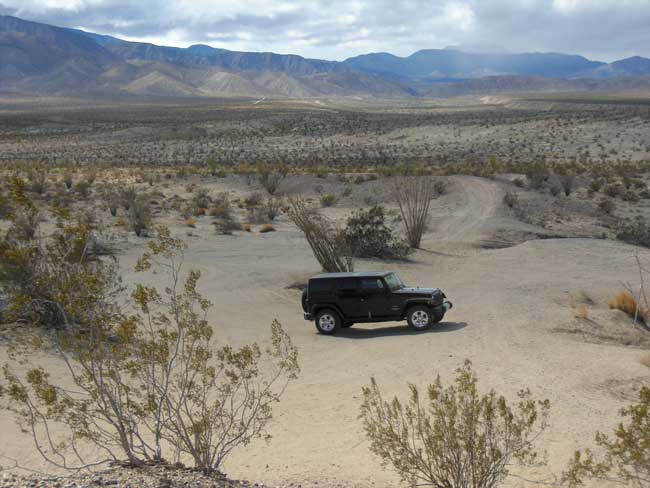Anza Borrego: Having the desert to ourselves...