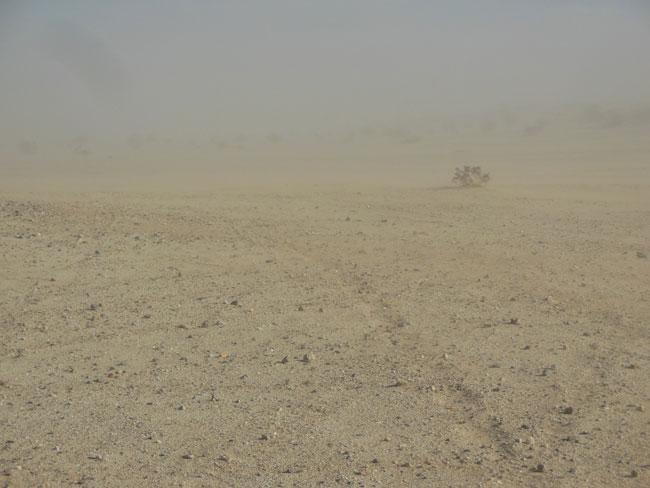 Anza Borrego: Sandstorm