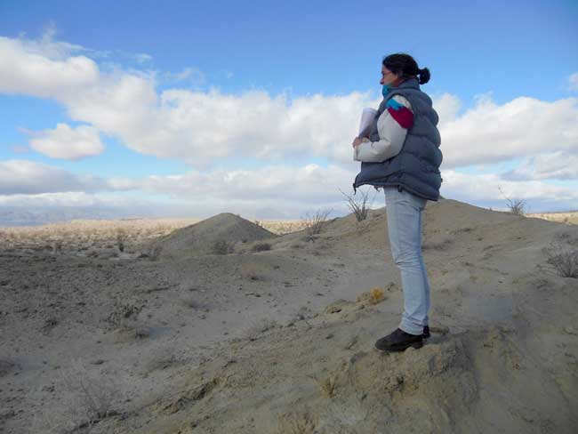 Anza Borrego: Confirming our position