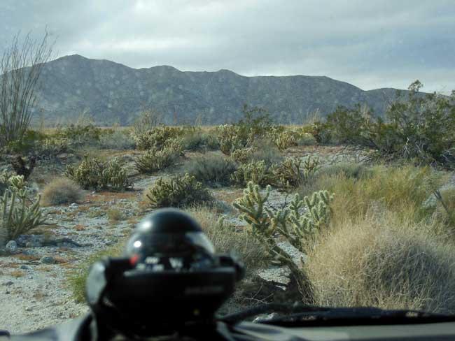 Anza Borrego: Desert rain
