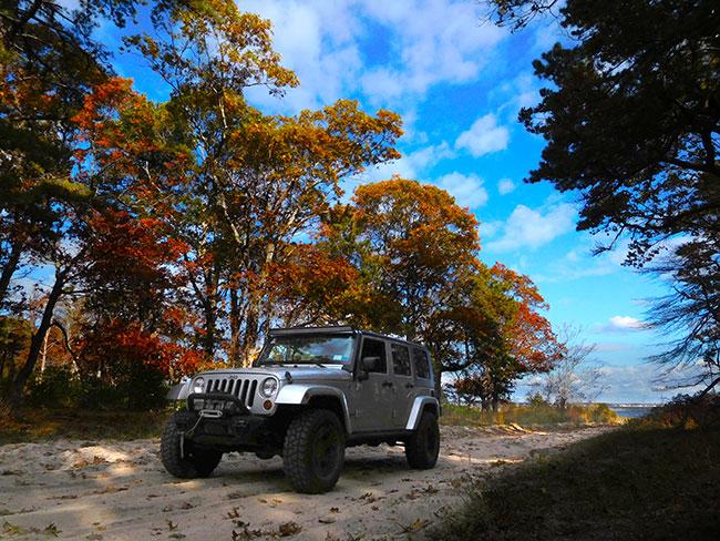 li_nov2016_fall_jeepleavingbeachcolor_dscn1656_650w