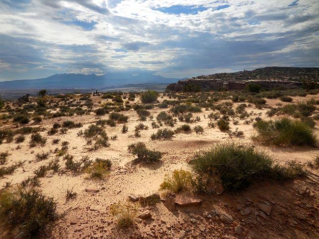 Classic Western Desert Landscape